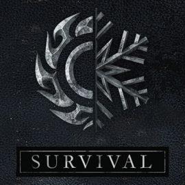 Survival Mode Coming To Skyrim