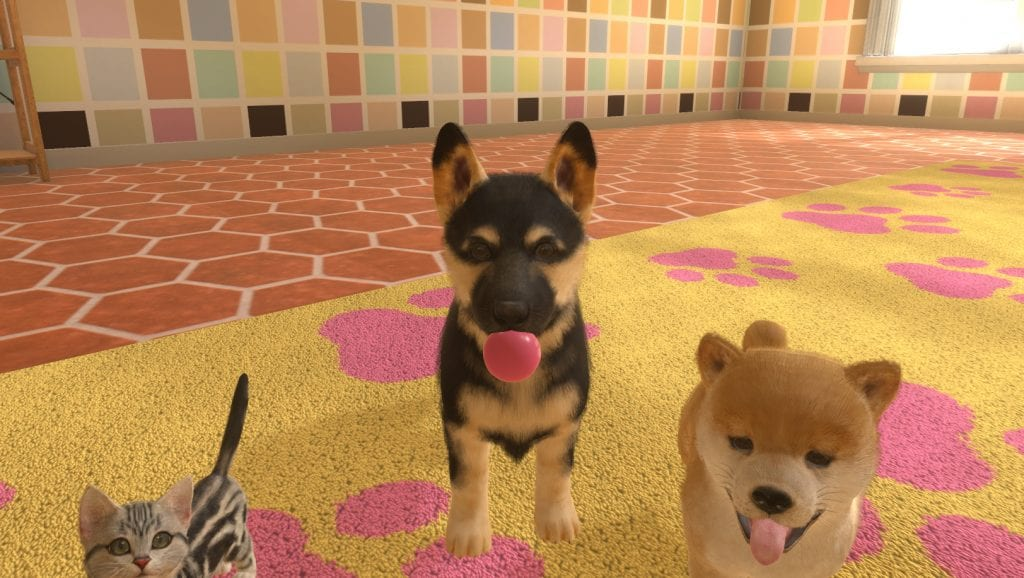Pax East 2019 Little Friends Dogs And Cats Scratches The Itch